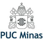 Puc Minas